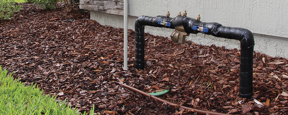Residential Backflow Preventer