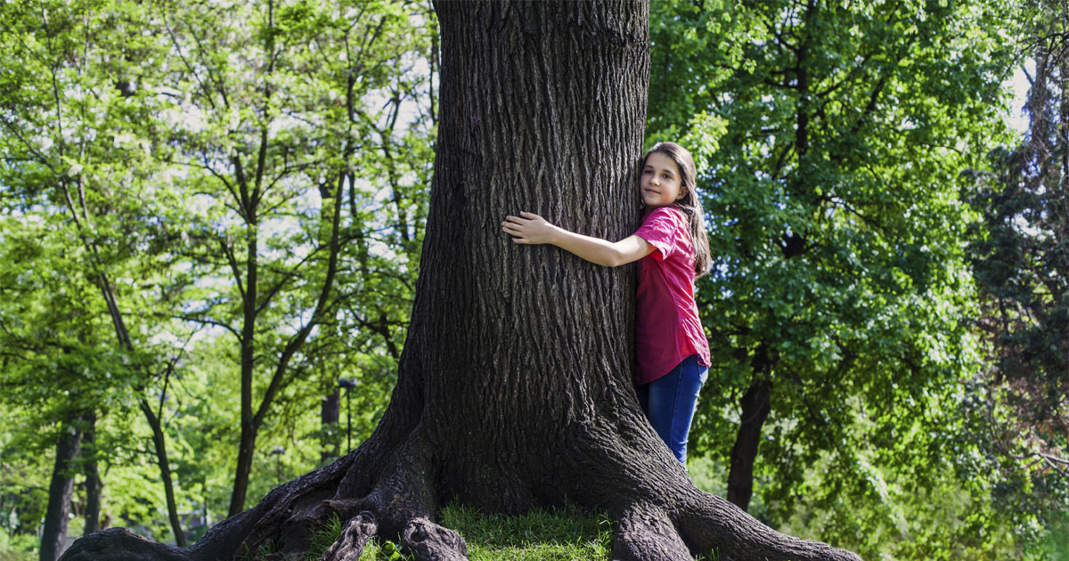 Arbor Day Free Tree Giveaway Community Events Events Jea