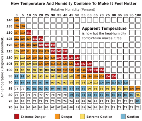 How Temperature and Humidity Combine To Make It Feel Hotter